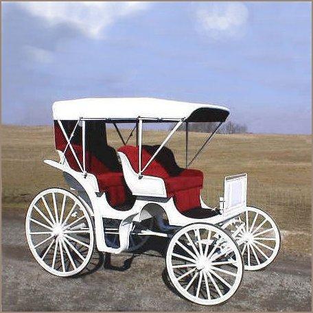 Horse Drawn Auto Surrey Carriage Wagons